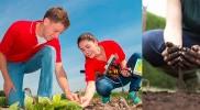 Career in Agronomy