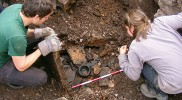 Career in Archaeology