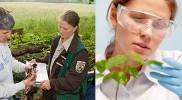 Career in Biologist