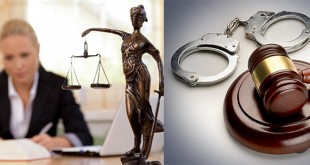 Criminal Lawyer Career