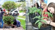 Career in Horticulture