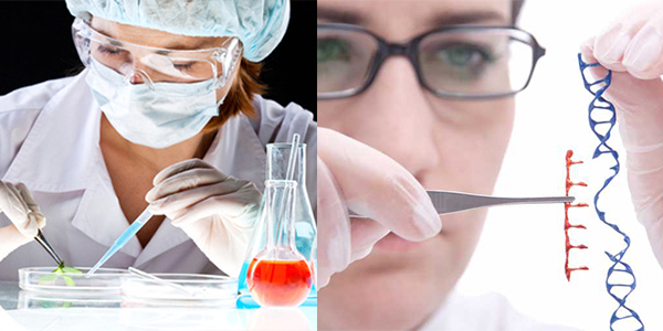 Biotechnology Engineering