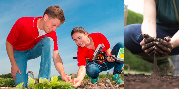 Agronomy Careers