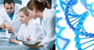 Bioinformatics Careers