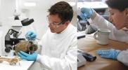 Career in Forensic Science