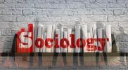Career in Sociology