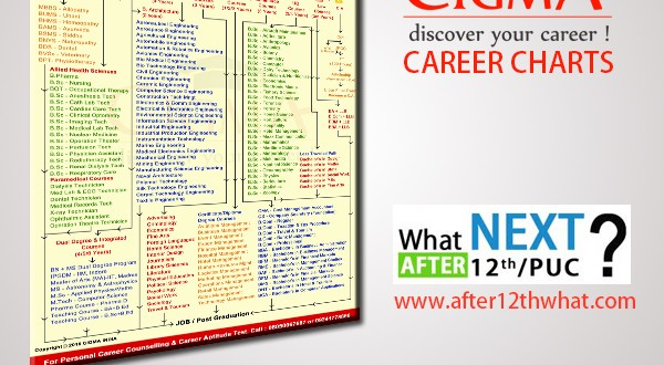 Cigma career chart after 12th what next in india altavistaventures Images